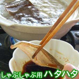 しゃぶしゃぶ用とろハタハタ(冷凍)約100g 約2人前(浜坂産)大きなハタハタを使用しております。(はたはた・白ハタ)|matubagani