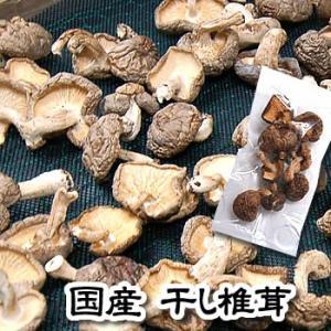 (メール便限定・送料無料セール)国産 干し椎茸(訳あり混じり) 21g (国内産、しいたけ、シイタケ)|matubagani