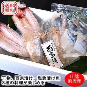 (送料無料)山陰の海鮮いろどりセット(冷凍)(アゴ,干物,サワラ塩麹漬,ニシン,西京漬け)焼くだけ料理が簡単 |matubagani