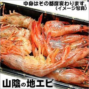 山陰の地エビ(冷凍)(約250g)(浜坂産)(海老、えび)地元で水揚げされる種々の海老を詰めました。 matubagani