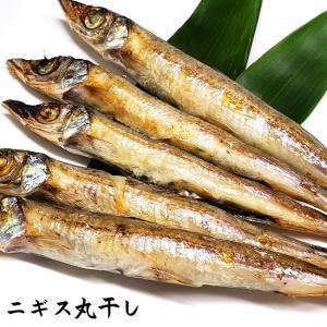 キス丸干し(冷凍)約200g (浜坂産)(オキギス・ニギス・きす)|matubagani