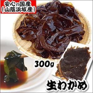 初摘み 生わかめ(冷凍)約300g (浜坂産)国産 初摘みわかめですので、柔らかくて美味しいです(おさしみわかめ、若布・ワカメ) matubagani