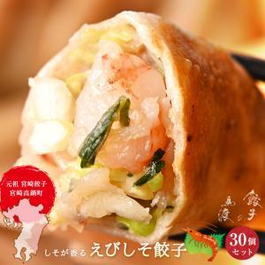 えびしそ餃子30個 女子に人気のあっさりした餃子 新宮崎グルメグランプリ優勝商品 特産品