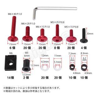 アルミ ボルト セット レッド 赤 5mm 6mm M5 M6 ウェルナット クリップナット ナイロン ワッシャー カラー アルマイト フック ナンバー カウル カウリング max-advancer 08