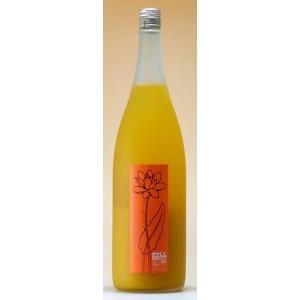 山の壽酒造 梅酒 1,800mlフルフル 完熟マンゴー梅酒