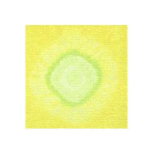 むら染めサークル 3 (50×50cm)|mcsquare
