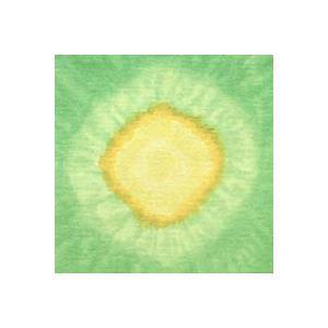 むら染めサークル 8 (50×50cm)|mcsquare