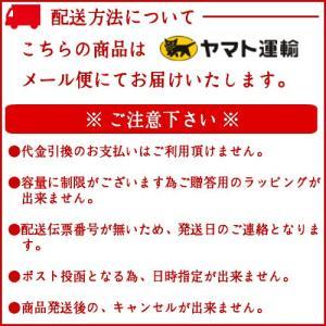 おつまみ 宮崎名物 焼き鳥 鶏の炭火焼100g...の詳細画像1