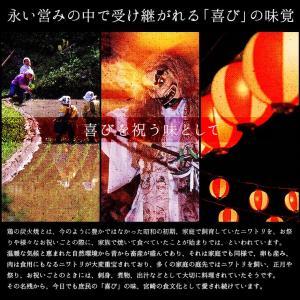 おつまみ 宮崎名物 焼き鳥 鶏の炭火焼100g...の詳細画像3