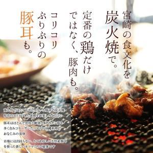 おつまみ 宮崎名物 焼き鳥 鶏の炭火焼100g...の詳細画像4