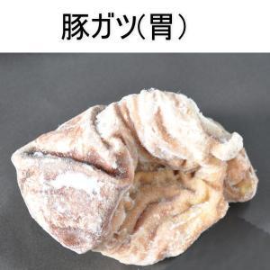 国産 豚ガツ(ボイル)1Kg/豚胃袋/豚ガツ/豚ホルモン|meat-gen