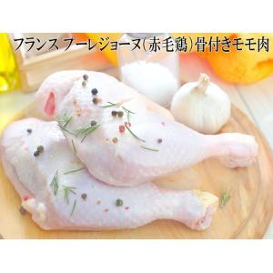 フランス プーレジョーヌ(赤毛鶏)骨付きモモ肉 2本入 約500g(230〜270g×2)骨付き鳥 骨つき鳥 骨付きチキン 骨付きもも肉 骨つきもも肉|meat-gen