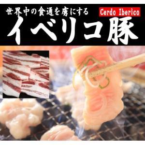イベリコ ベジョータ 焼肉用バラ肉 200g|meat-gen