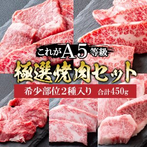 牛肉 肉 A5ランク 和牛 中トロカルビ 焼肉 400g ギフト 敬老の日 A5等級 BBQ バーベキュー 黒毛和牛 国産 内祝い お誕生日 化粧箱対応|meat-tamaya