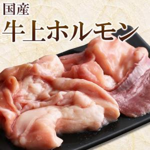国産 牛 上ホルモン 200g (小腸 ギアラ ハツ のミックス) ホルモン 焼き肉 焼肉 バーベキュー BBQ もつ鍋 モツ鍋|meat-tamaya