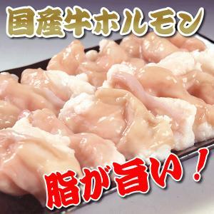 国産ホルモン(小腸 ) 300gパック