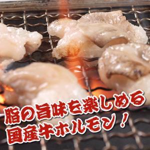 国産ホルモン(小腸 ) 300gパック|meatpiasanuki|03