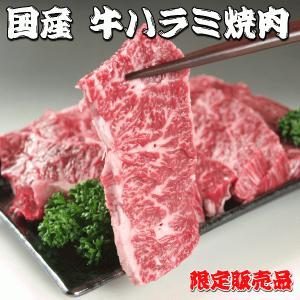 国産 牛肉 牛 ハラミ はらみ 焼き肉 焼肉(BBQ バーべキュー) 200g 限定販売品|meatpiasanuki