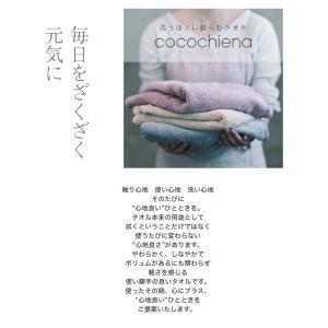 出産祝い おむつケーキ 送料無料 今治タオル ...の詳細画像3
