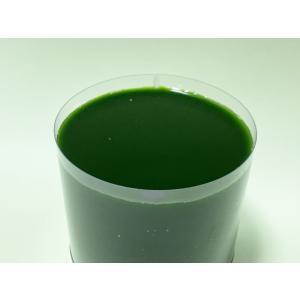 グリーンウォーター  クロレラ水 500ml 最高級スーパー生クロレラ使用