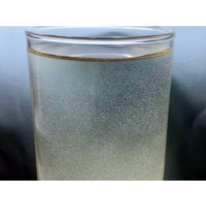ゾウリムシ インフゾリア 300ml 活餌