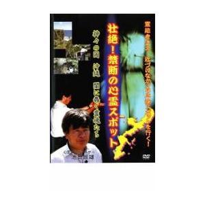 壮絶!禁断の心霊スポット 神々の国・沖縄 闇に蠢く霊魂たち レンタル落ち 中古 DVD mediaroad1290