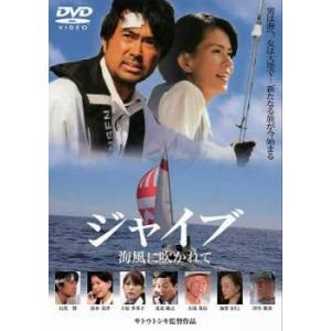 ジャイブ 海風に吹かれて 中古 DVD
