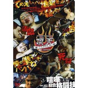 bs::STREET FIGHT 頂天 TEPPEN JAPAN 喧嘩一武道会 レンタル落ち 中古 ...