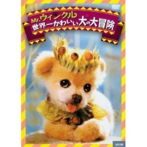 Mr.ウィンクル 世界一かわいい犬の大冒険【字幕】 レンタル落ち 中古 DVD|mediaroad1290