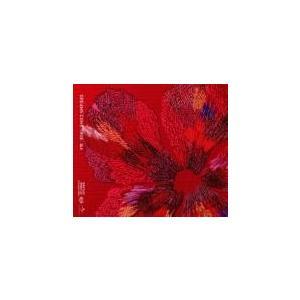 ねぇ CD+DVD 初回限定盤 セル専用 新品 CD|mediaroad1290