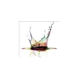 カルペ・ディエム CD+DVD 初回生産限定盤 セル専用 新品 CD|mediaroad1290