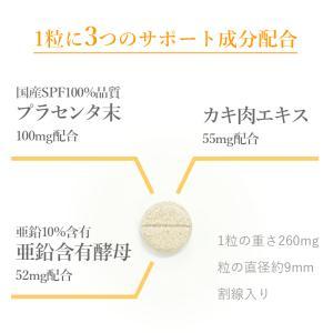 犬 猫 サプリメント 肝臓 肝機能 ALT GPT ALP 健康維持 プラセンタクレア 20粒 日本製|medinex|03