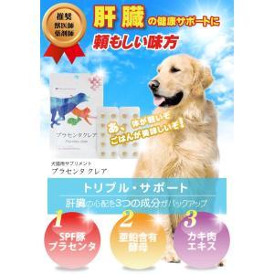 犬 猫 サプリメント 肝臓 肝機能 ALT GPT ALP 健康維持 プラセンタクレア 20粒 日本製|medinex|07