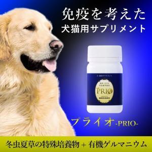 犬 猫 サプリメント 免疫力を考える健康維持 プライオ 45g|medinex|02