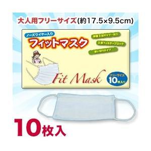 なんと!あの【ERAJAPAN】ノーズワイヤー入りフィットマスク (3層フィルタ・使い切りタイプ) 大人用フリーサイズ 10枚入り が大特価! medistock