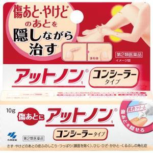 【第2類医薬品】 小林製薬 アットノンt コンシーラータイプ <10g>