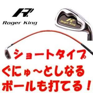 【短尺アイアンタイプ】 HIROTA GOLF Roger King Swing Doctor Sh...