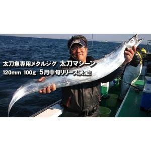 エンドウクラフト(Endo Craft) 太刀マシーン 150g オールピンク|megaproductjp|02