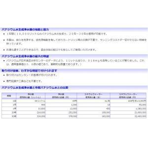 VANADEAN-G300 バナジウム水生成浄水器|megumi-1|09