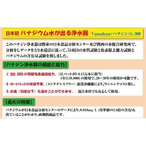 VANADEAN-G300 バナジウム水生成浄水器 新品|megumi-1|05