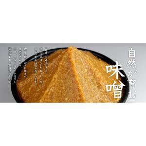生みそ 2kg袋入|megurokouji|03