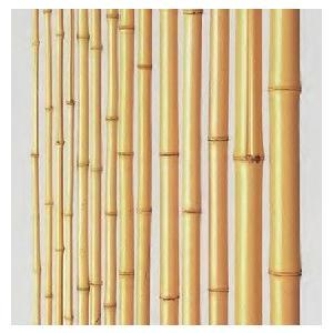 竹材 竹 晒竹 防虫処理 湯抜き加工品  2000x14〜16φ mm|meibokuya-shop