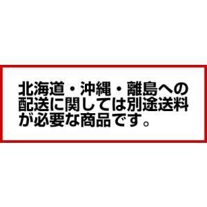ガス式クレープ焼台 EK-2型(二連) LPガス|meicho|02