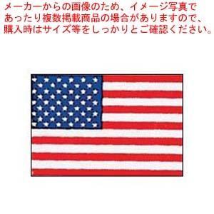 エクスラン万国旗 70×105cm アメリカ|meicho