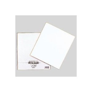 色紙 シキシ-4 1枚 マルアイ|meicho