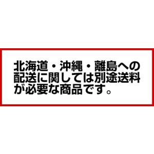 福島工業 フクシマ ドゥフリーザー ベーカリー機器 QBX-118FMLT 「18枚差しW620タイプ」 メーカー直送/代引不可【】 meicho 03