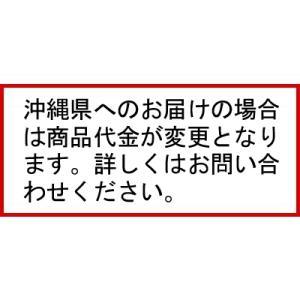(2年保証)パナソニック 業務用冷凍庫 横型 コールドテーブル SUF-K1561SA W1500×D600×H800mm  【 メーカー直送/代引不可 】|meicho|02