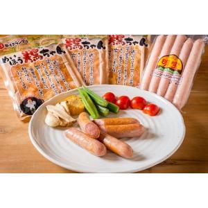 鶏ちゃん 明宝フランク ケンミンSHOWで紹介された岐阜県の鶏料理は鶏ちゃん 道の駅で行列のフランク...