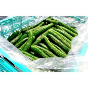オーラパック 野菜袋 大袋7663 500枚入|meijoukasei