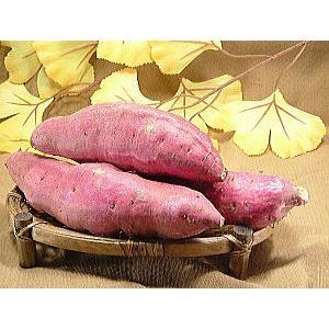 さつまいも 福井県産 サツマイモ とみつ金時 お試し 2kg さつま芋 薩摩芋 昔ながらの ほのかな甘味とふっくら食感が特徴です meisankobo